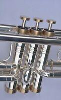 Bach Trumpet Trim Kit Light Caps. KGUBrass. Raw Brass. TKLR105