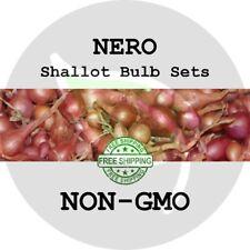 Nero Shallot Sets (Round Bulbs) - Non-Gmo Multiplier Onion Seed Garden Plant