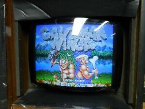 Caveman Ninja  Data East  Jamma PCB  game board arcade 1991