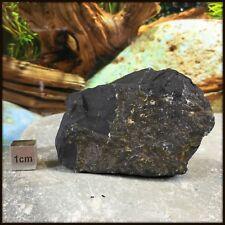 Shungite - High Quality Mineral / Crystal Specimen - RSE838