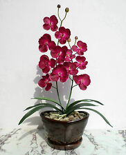 """Butterfly Orchid - 23"""" (58cm) - Artificial Real Touch Flower, Imitation Plant"""