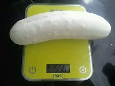 ☺20 graines de concombre blanc