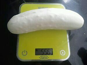 ☺10 graines de concombre blanc