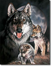 Wolf Experience Wolves Pup Nature Wilderness Wild Animals  Metal Sign