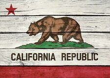California State Flag, Grizzly Bear, Red Star, CA Republic, Green Grass Postcard