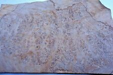 Burr Oak Veneer  44 cm by 28 cm cm (1529)