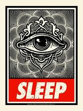 AngryBlue Sleep OBEY Shepard Fairey Poster OBEYGIANT Art Print