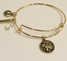 Astrology Wire Bangle Bracelet With Clasp Gold Plated 2 Sided Capricorn Zodiac