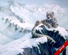 RESTING SNOW LEOPARD WILD CAT IN MOUNTAINS ANIMAL PAINTING ART REAL CANVAS PRINT