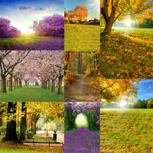 3x5/5X7ft Autumn Fall Forest Tree Vinyl Photo Backdrop Photography Background