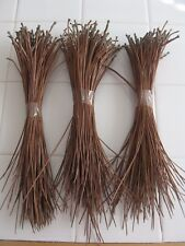 "TEXAS LONGLEAF PINE NEEDLES, 3 OZS, DRIED, 5"" TO 10"", GREAT FOR CRAFTS..."