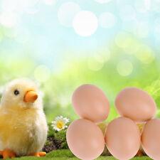 New 5pcs Fake Plastic Dummy Egg for Chicken Hen Hatching 53x44mm