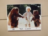 THE EWOKE ADVENTURE Lobby card panel  movie japan  1984