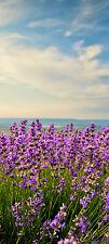 Türtapete Lavendel TT304 Größe: 90x200 cm Tapete Frankreich Provence Blüten