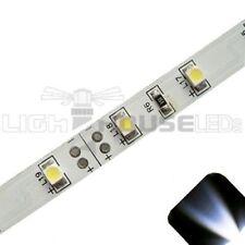 White - PLCC2/3528 12V LED Strip - Adhesive Backing - 5m Roll / Reel
