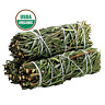 Rosemary Smudge Sticks (Pack of 3) House Cleansing, Energy Cleanse