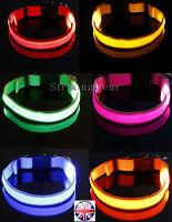 LED Light-Up Flashing XS Little Dog Cat Collar Full Plain Design * 8 Colours *UK