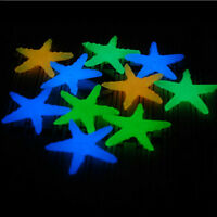 10X Glow In The Dark Starfish Stone Aquarium Fish Tank Decor Conch  Shells MW