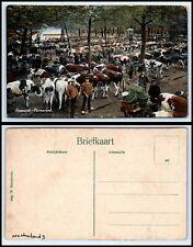 NETHERLANDS Postcard - Koemarkt, Purmerend, Men & Cattle D32