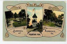 Roanoke VA Mountain Park Multiview—Antique Art Nouveau PC 1912