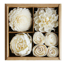 Mixed Sola Flower Cotton Wick Diffuser Gift Set for Aroma Oil by Plawanature