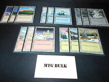 15 Basic Land Lot - ICE AGE - 1x of each art - SP/NM - Magic MTG FTG