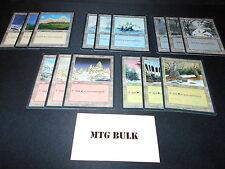 15 Basic Land Lot - ICE AGE - 1x of each art - MP/SP - Magic MTG FTG
