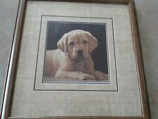 John Weiss Pick of the Litter signed numbered, frwmed puppy print