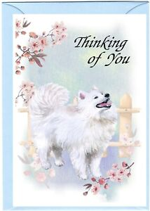 "Samoyed Dog (4"" x 6"") Thinking of You Card (blank inside) by Starprint"