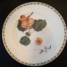 ROSINA-QUEEN'S HOOKERS FRUIT Fine Bone China SALAD PLATE New (R.H.S.) PEACH
