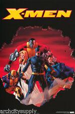 Lot Of 2 Posters :Comics : X-Men - Astonishing - Free Ship #8729 Rap101 C