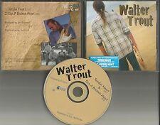 WALTER TROUT Tender Heart / Got a broken 2 TRK SAMPLER PROMO DJ CD single 1997