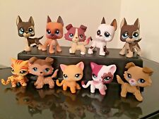 Littlest Pet Shop LPS Collie Cat #339 Great Dane Dog #577 3 Random FREE SHIPPING