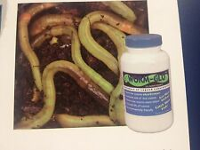 LEGEND LAB   WORM GLO TURNS LIVE WORMS CHARTREUSE BAIT FISHING 6 oz BOTTLE NEW