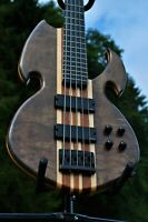 Manton Customs Titan 5 String Bass Neck Through Bass Guitar Luthier Active EMG