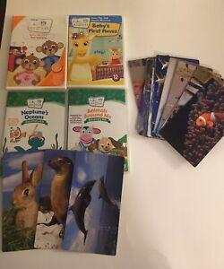 Baby Einstein Lot 4 DVDs 16 Flashcards Baby Da Vinci Baby's First Moves Animals