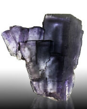 "4.3"" Robust Blue FLUORITE Crystals w/Multiple Purple Phantoms Illinois for sale"