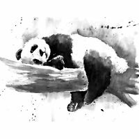 Panda Sleeping Watercolour Large Wall Art Print 18X24 In