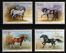 Horses set of 4 mnh stamps 1985 Hungary #3984-7 breeds