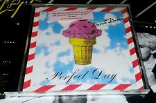 DURAN DURAN Perfect Day USA 2 Track Promo Only CD
