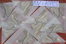 10 x A1- Unmounted MOTH Lyssa zampa ? Uraniidae ? # Vietnam CENTRAL ## BN10