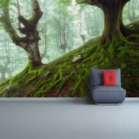 Non woven Wall Mural Photo Wallpaper Poster Picture Image Beech Forest