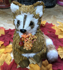 Bath And Body Works Fall Racoon