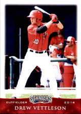 2014 Harrisburg Senators Grandstand #30 Drew Vettleson Boise Idaho Baseball Card