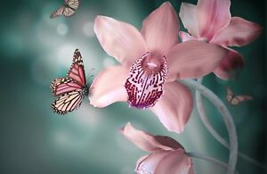 Pink Flower - Butterfly Cute Neutral Landscape Large Poster / Canvas Pictures