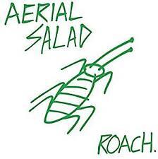 Aerial Salad - Roach (NEW CD)