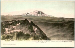 RAINIER NATIONAL PARK, Wash. Postcard Aerial View HAND-COLORED Albertype c1910s