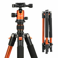ZOMEI Q555 Flexible Light weight Aluminium Tripod&Ball Head For Digital Camera