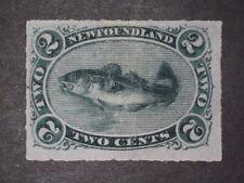 Newfoundland Stamp #38 MH/CR