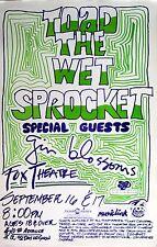 Toad The Wet Sprocket / Gin Blossoms 1995 Denver Concert Tour Poster